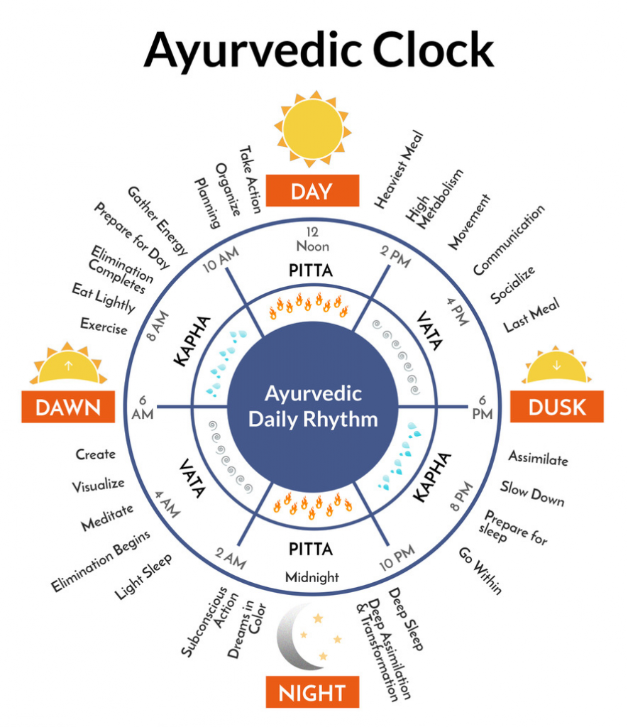This image has an empty alt attribute; its file name is Ayurveda-Clock-cropcolor-885x1024-1.png